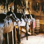 """The Tack Room"" by dlwilson"