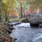 """""""Creek in the Fall- Great Falls National Park"""" by mferraton"""
