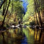 """Oak Creek Color"" by FrankZullo"