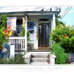 """The Chicken Store - Key West, FL"" by CCordelia"