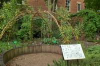 In the Physic Garden, Chelsea 51
