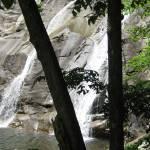 """""""White Oak Canyon Waterfall 2"""" by mferraton"""