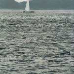 """""""Sailboat and Waves"""" by Ffooter"""
