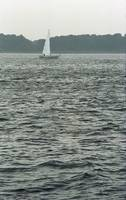 Sailboat and Waves, Piscataqua River, Maine 2004