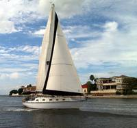 Sailboat, Tampa Bay, FL