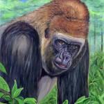"""""""Western Lowland Gorilla"""" by edenart"""