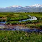 """Bridgeport Meadow & Stream"" by Generik"