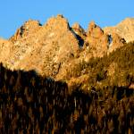 """Sawtooth Sunrise Trees"" by Generik"