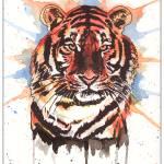 """Auburn Tigers"" by berreyart"