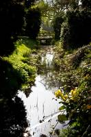 A stream at Hever Castle