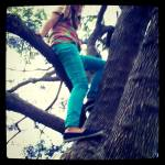 """""""In a tree"""" by LookingGlassphotography"""