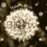 """Make a Wish"" by LJdesigns"