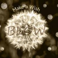 Make a Wish by Lisa Rich