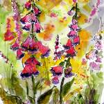 """Forest Flowers Digitalis Foxglove Watercolor"" by GinetteCallaway"