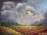 Lightening over Flower Fields