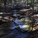 """Yellowstone Creek"" by Jason_Speer_Photo"