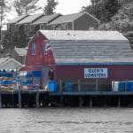 """Mackerel Cove - Glen"