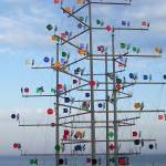 """Flag Tree - Malaga"" by phoenixphotos"
