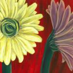 """Bold Gerbera Daisies"" by PinkiDee"