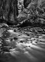 The Narrows (B&W)
