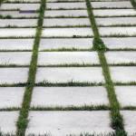 """Grassy Steps"" by raetucker"