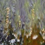 """""""Water at the Dam  #19"""" by VirginiaZuelsdorf"""