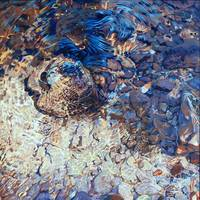 Shattered light oil on canvas  36 x 36