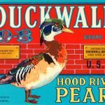 """Duckwall Pears Fruit Crate Label"" by lifeoverhere"