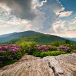 """Roan Mountain Rays - Jane Bald Landscape"" by DAPhoto"