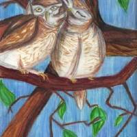 Owlets Art Prints & Posters by Rachel Willis