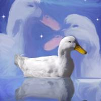 White Duck Collage Art Prints & Posters by Judy Brand
