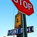 """""""Point Drive"""" by Eddie-Enriquez"""
