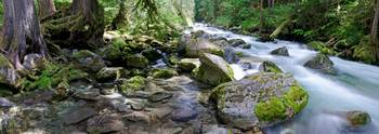 Newhalem Creek Panorama 1