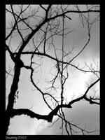 Lonely Branches BW