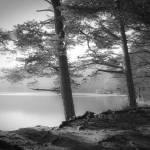 """Loch an Eilein"" by doritfuhgphotography"