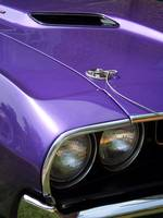 Purple Muscle - 1970 Dodge Challenger