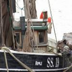 """""""Cornwall 2011 351a"""" by Crusheddice"""