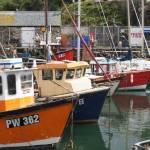 """Cornwall 2011 334"" by Crusheddice"