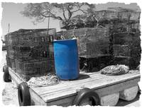 Blue Barrel and Lobster Traps