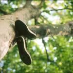"""""""Shoes tree"""" by xinh-xu"""