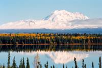 Autumn View of Mt. Drum (Alaska)