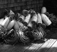 Ropes And Buoys