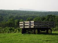 Winery Wagon