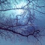 """Blue Danube"" by valzart"