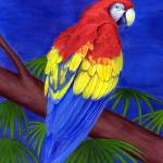 """Scarlet Red Macaw"" by edenart"