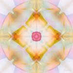 """Mandala"" by AnneVis"