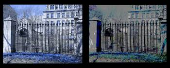 Diptych Botany Pond Fence, University of Chicago