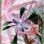 """Blume"" by mattkrack"