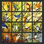16Birds gallery