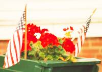 American Flags & Geraniums In A Wheelbarrow, One